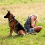 Интересно: как появилась немецкая овчарка