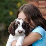Анималотерапия как средство социальной адаптации детей-аутистов