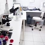 Эффективный способ борьбы с инфекциями животных — вакцинация