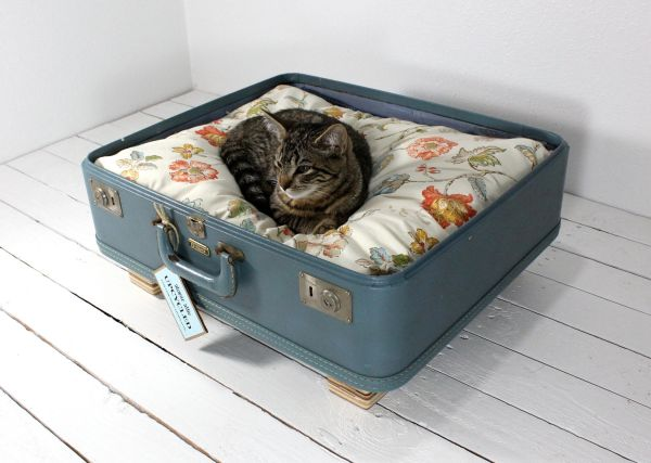 Pet-Beds1