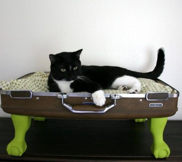 Pet-Beds2