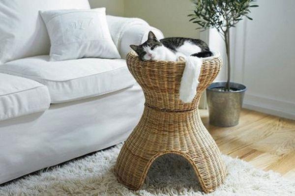 cat-design-stool