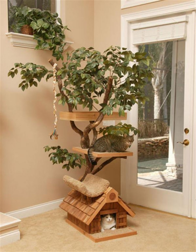 unique-cat-tree-houses
