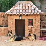 Выбираем собаку для охраны загородного дома