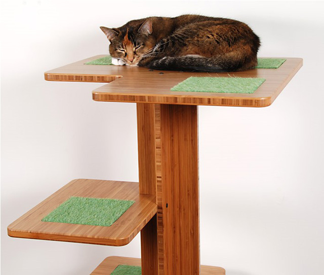 Scratching posts for cats