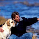 Холецистит – воспаление желчного пузыря у собак