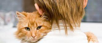 Хозяйка обнимает кота