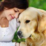 Как лечат анемию у собак?