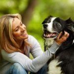 Разновидности заболеваний нервной системы у собак