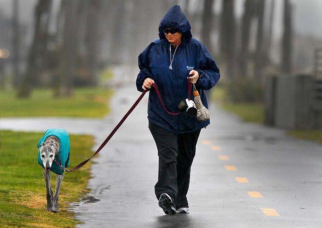 Женщина на прогулке с собакой
