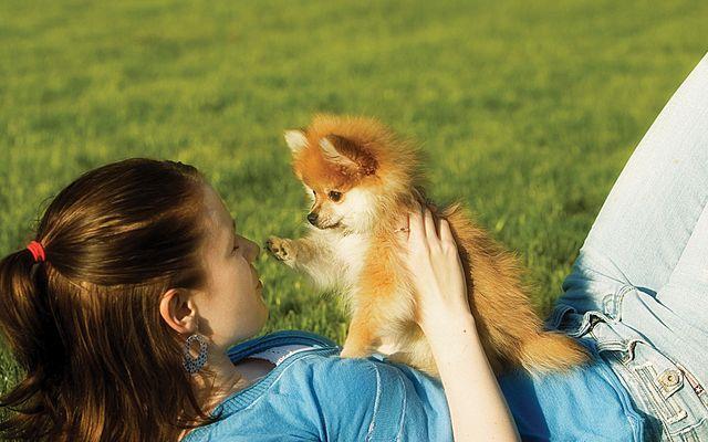Женщина держи собачку