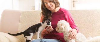 Женщина с котом и собакой