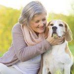 Памятка владельцу: сердечные заболевания у собак