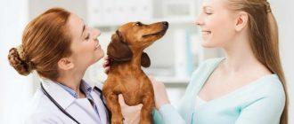 Хозяйка с собакой у врача