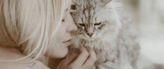 Хозяйка обнимает кошку