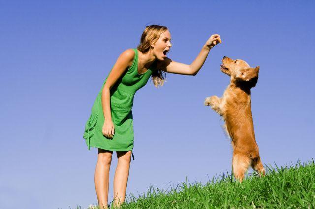 Женщина дрессирует собаку