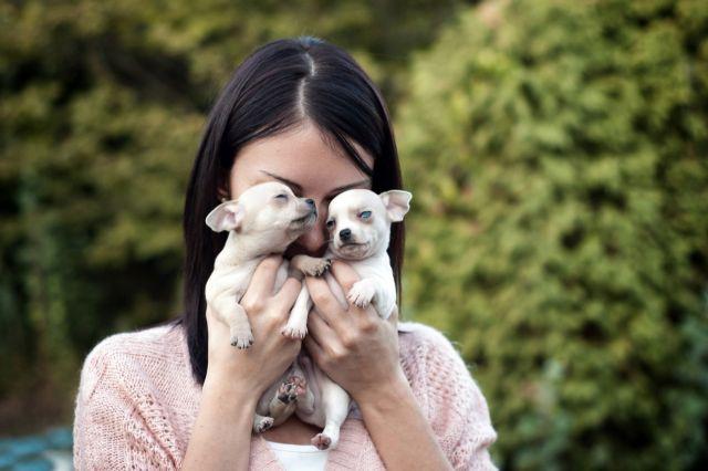 Женщина держит двух щенков