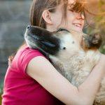 Эффективные способы лечения миозита у собак
