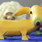 Едят ли собаки бананы?