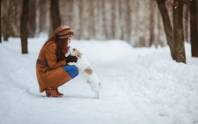 Хозяйка с собакой на прогулке