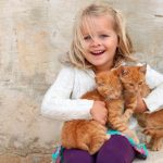 Лечение лишая у котят в домашних условиях