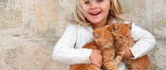 Девочка держит двух котят