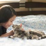 Что делать, если котёнок чихает