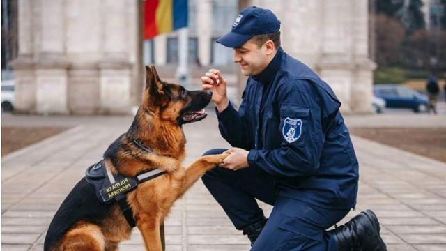 Собака дает лапу мужчине