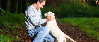 Мужчина обнимает пса