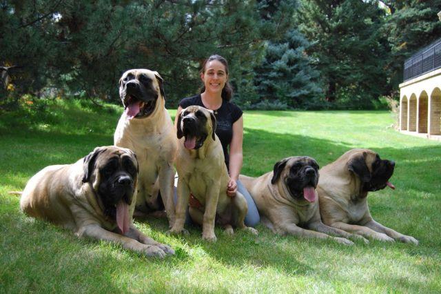 Женщина с пятью собаками