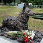10 памятников собакам – за преданность и верность
