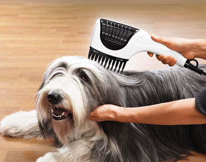 фен-расческа для собак