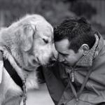 Преданность собак – природный инстинкт или выработанное качество?