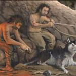 Происхождение собак