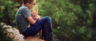 С кошкой на природе