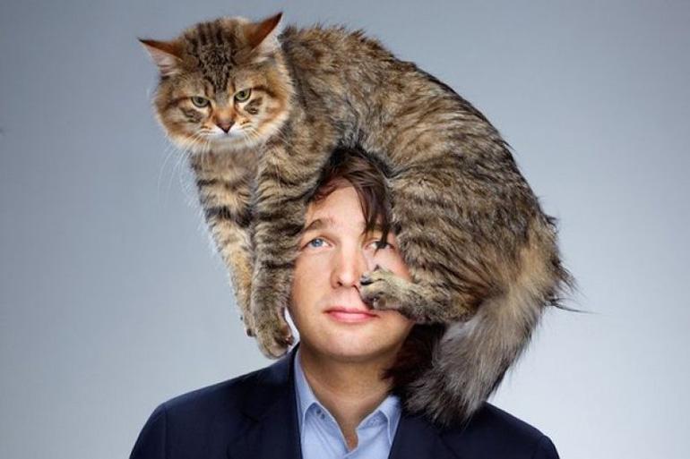 Кот сел на голову