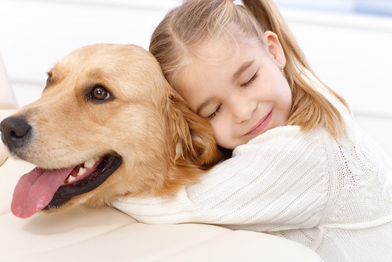 Любимый пёс
