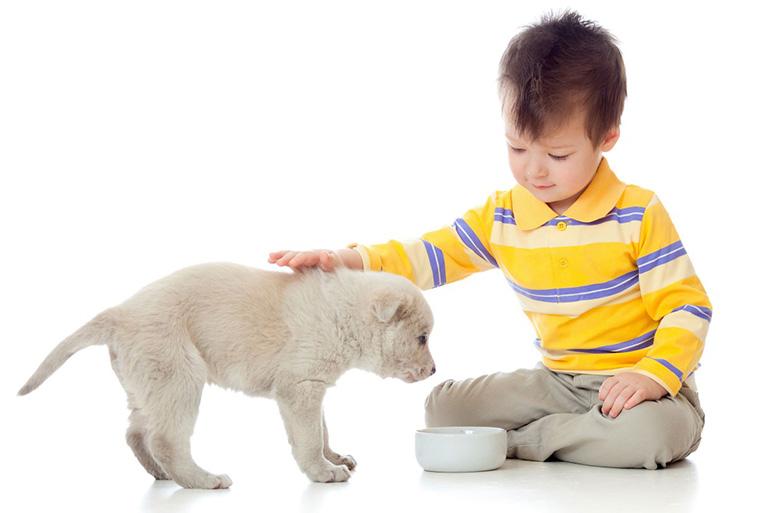 Ребёнок кормит щенка