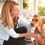 Ветеринарная помощь собакам на дому