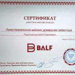 2015 г. Сертификат участника мастер-класса «Анестезиология мелких домашних животных» «Бальф».