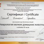 2018 г. Сертификат о прослушивании лекций «Неврология мелких домашних животных» «Биоконтроль».
