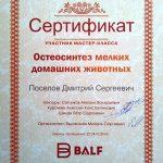 2014 г. Сертификат участника мастер-класса «Остеосинтез мелких домашних животных» «Бальф».