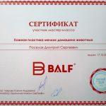 2015 г. Сертификат участника мастер-класса «Кожная пластика мелких домашних животных» «Бальф».