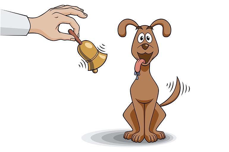 Рефлекс у собак