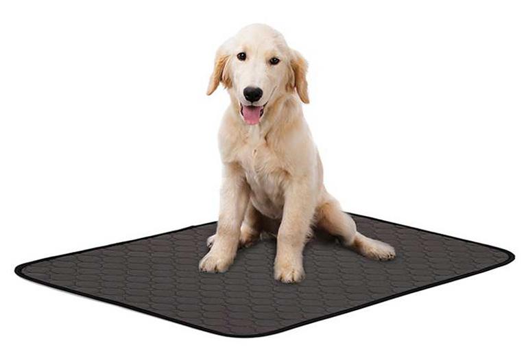 Многоразовая пелёнка для собак