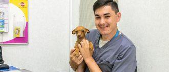 Мылов Александр Геннадьевич - ветеринарный врач анестезиолог-реаниматолог.