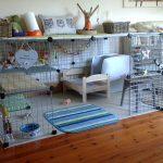 Как подобрать и обустроить клетку для декоративного кролика