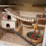 Покупка домика для шиншиллы, варианты самодельных конструкций